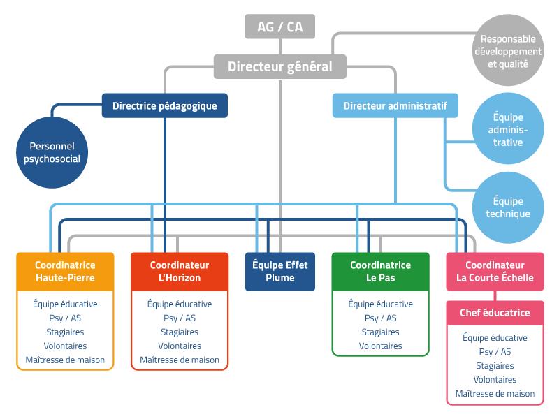 Organigramme-hierarchique